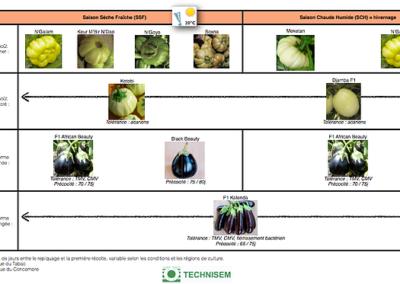 bf1_variety-calendar-aubergines